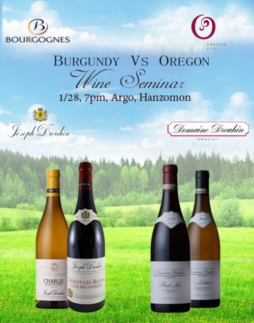 Burgundy Wine Vs Oregon Wine